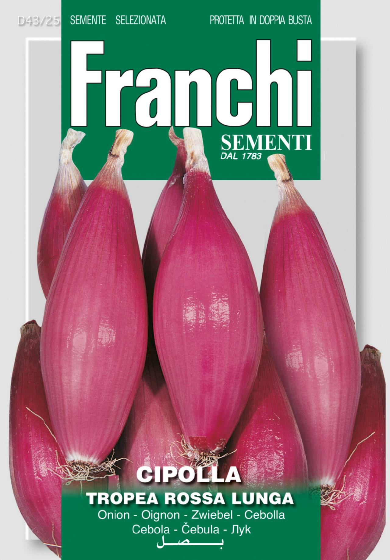 Allium cepa cepa 'Dulce Lunga di Tropea' plant