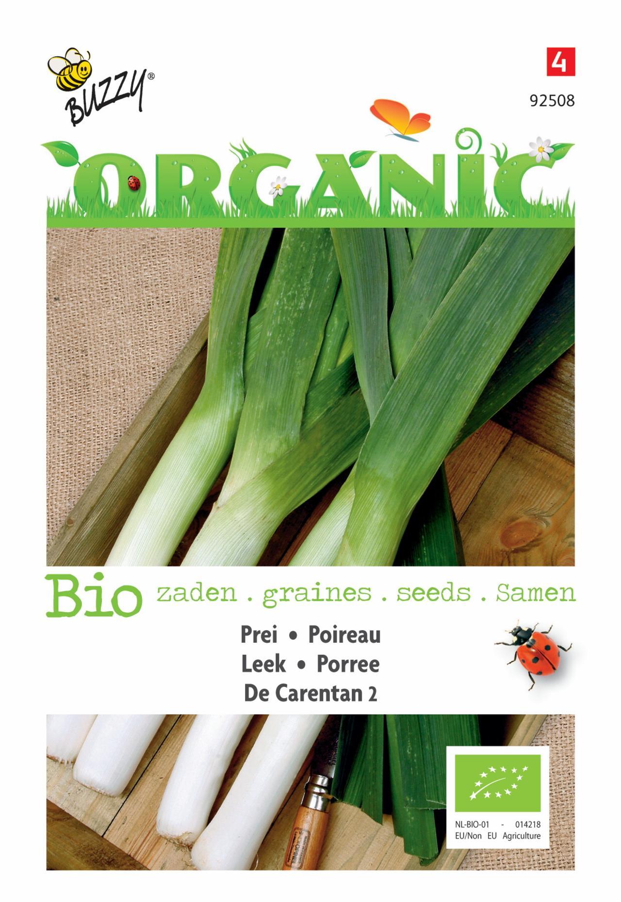 Allium porrum 'De Carentan 2' (BIO) plant