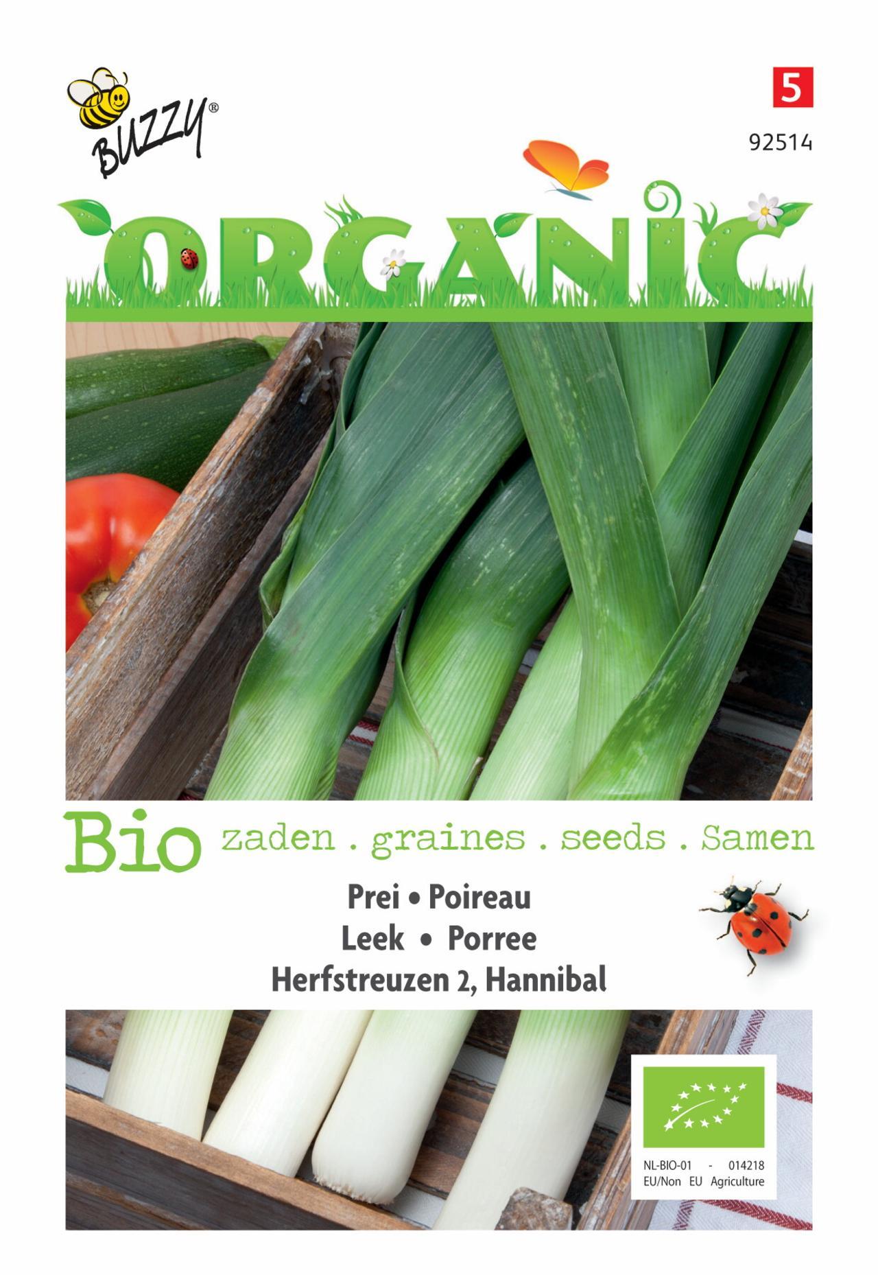 Allium porrum 'Herfstreuzen 2, Hannibal' (BIO) plant
