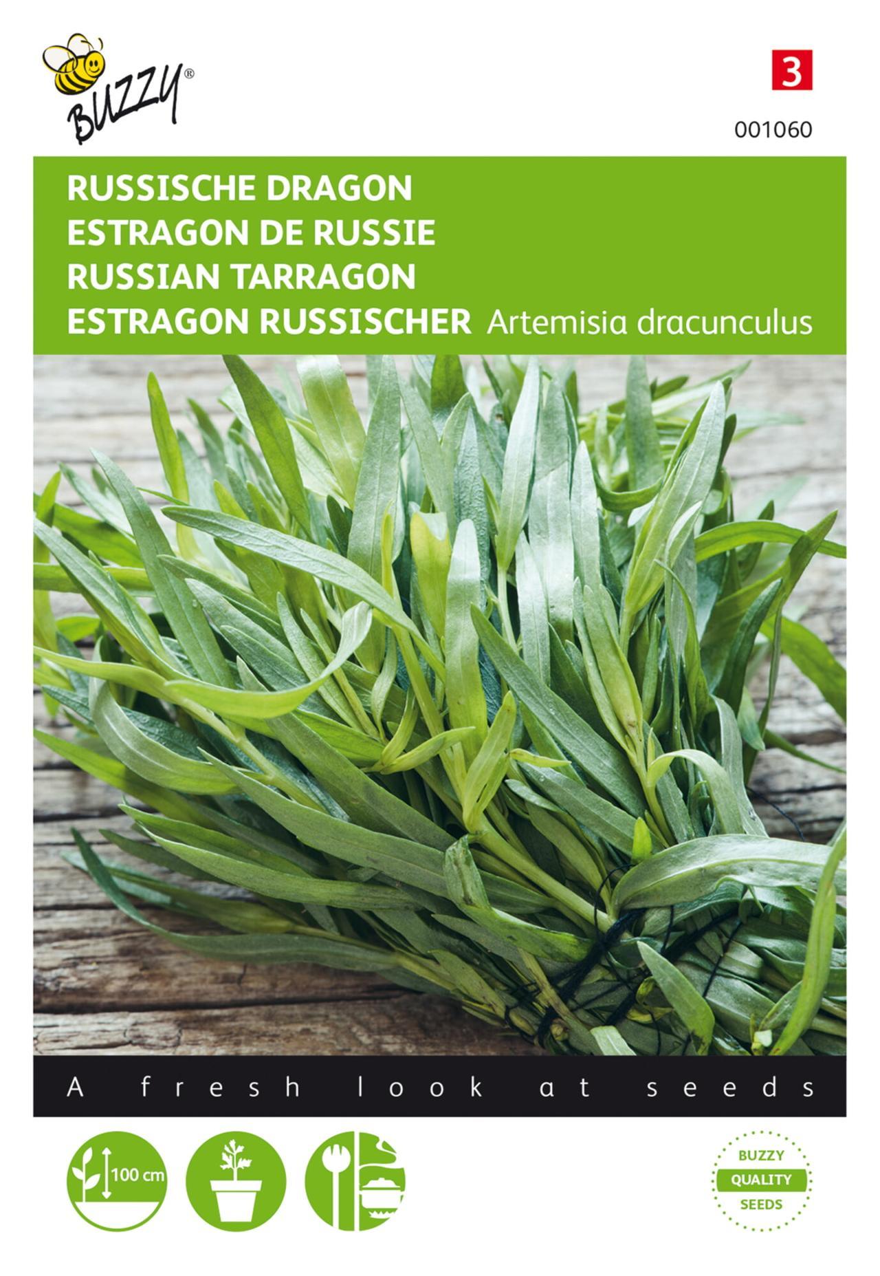 Artemisia dracunculus plant