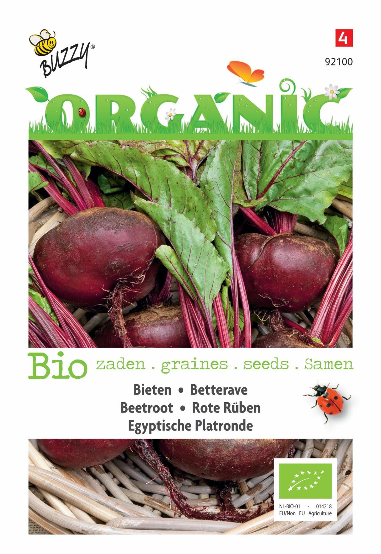 Beta vulgaris 'Egyptische Platronde' (BIO) plant