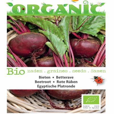 beta-vulgaris-egyptische-platronde-bio