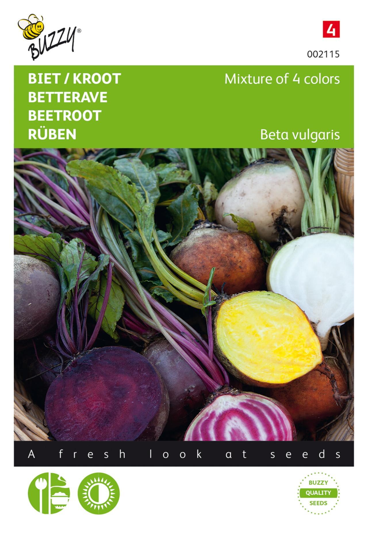 Beta vulgaris 'Mixed colors' plant