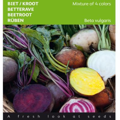 beta-vulgaris-mixed-colors