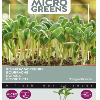 borago-officinalis-microgreens