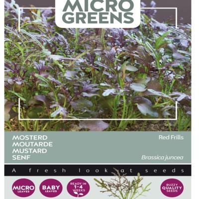 brassica-juncea-red-frills-microgreens