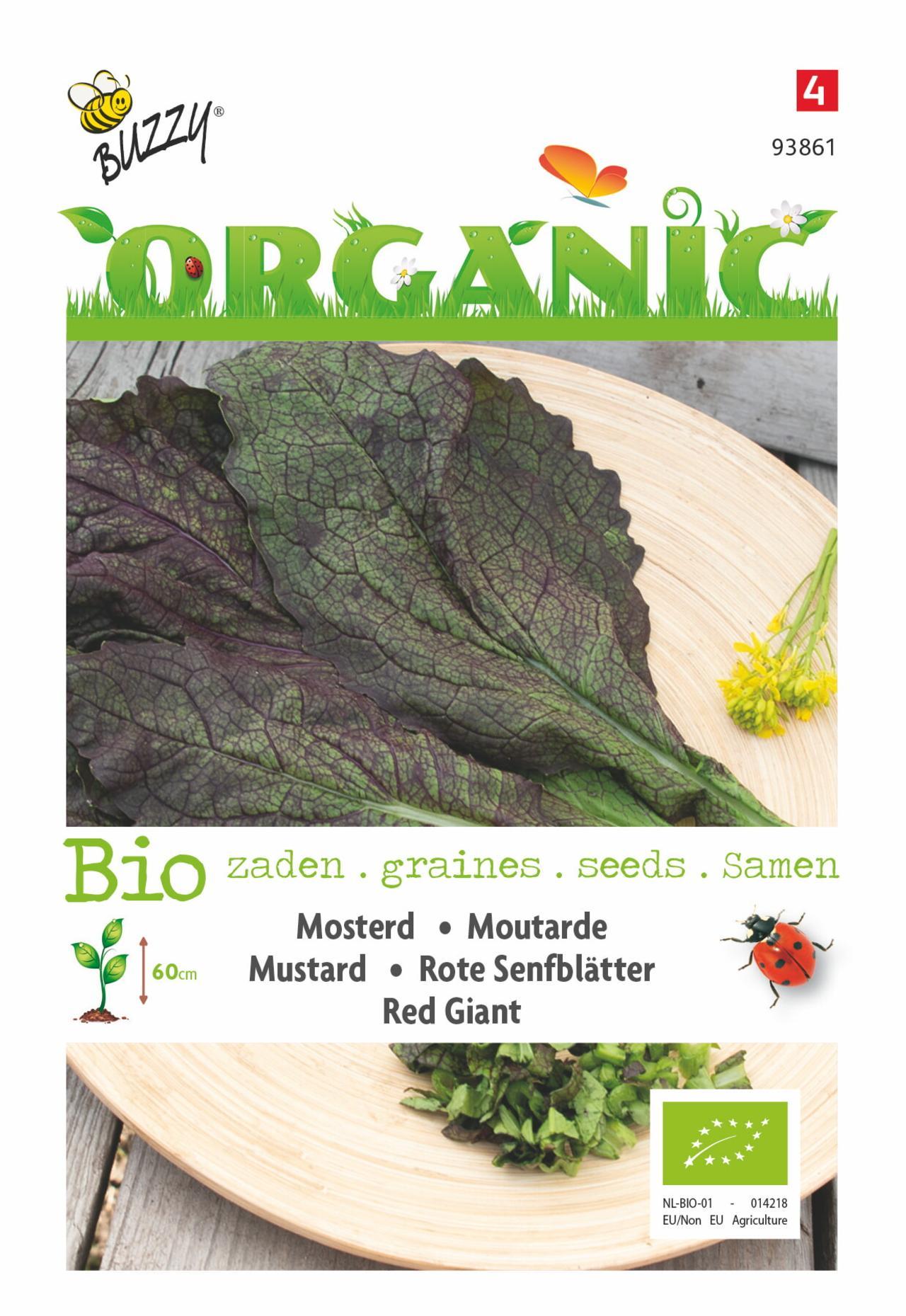 Brassica juncea 'Red Giant' (BIO) plant