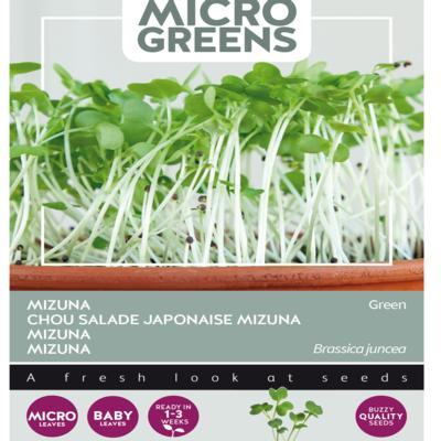 brassica-juncea-var-japonica-green-microgreens