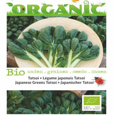 brassica-narinosa-bio