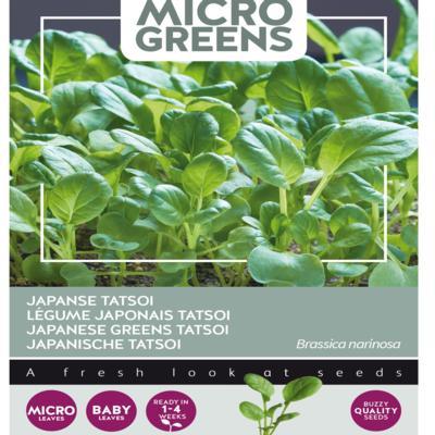 brassica-narinosa-microgreens