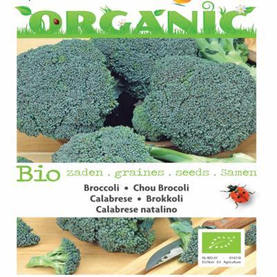 brassica-oleracea-calabrese-natalino-bio