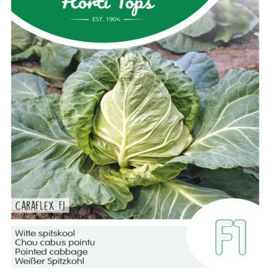 brassica-oleracea-caraflex-f1