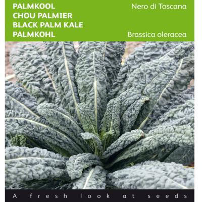 brassica-oleracea-convar-acephala-nero-di-toscana