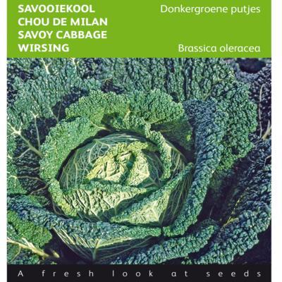 brassica-oleracea-donkergroene-putjes