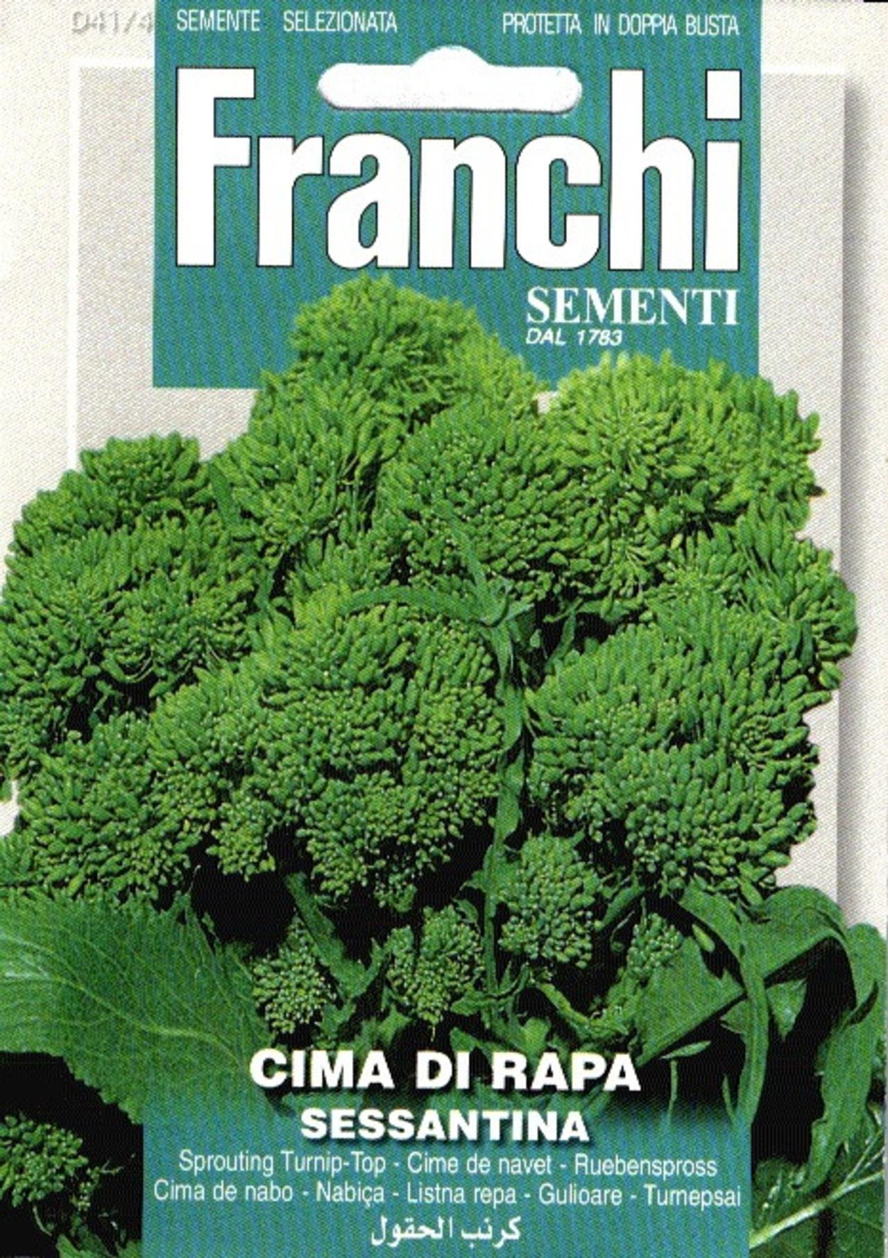 Brassica oleracea 'Sessantina' plant