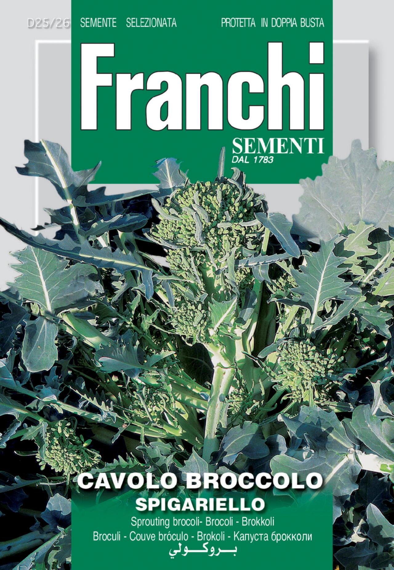 Brassica oleracea 'Spigariello' plant