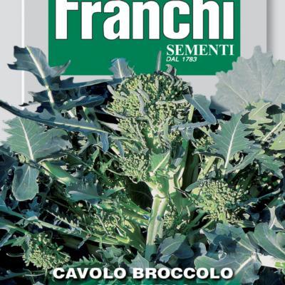 brassica-oleracea-spigariello