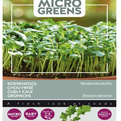 brassica-oleracea-westlandse-herfst-microgreens