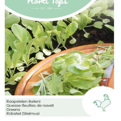brassica-pekinensis-gele