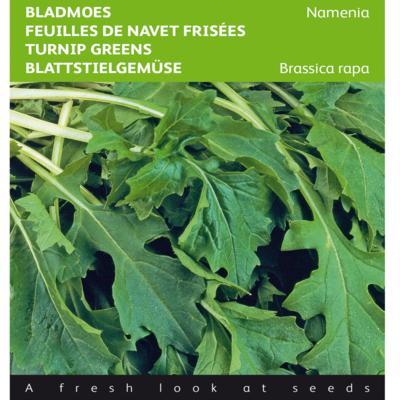 brassica-rapa-namenia