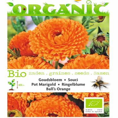calendula-officinalis-balls-orange-bio