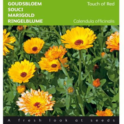 calendula-officinalis-touch-of-red