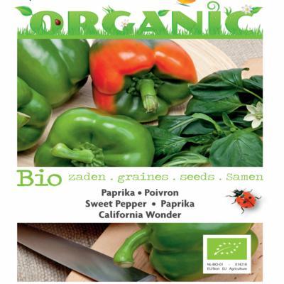 capsicum-annuum-california-wonder-bio
