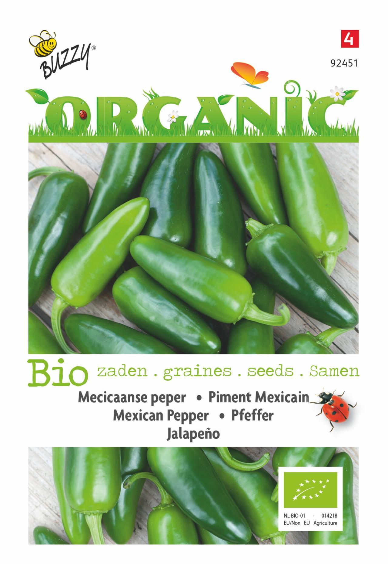 Capsicum annuum 'Jalapeno' (BIO) plant