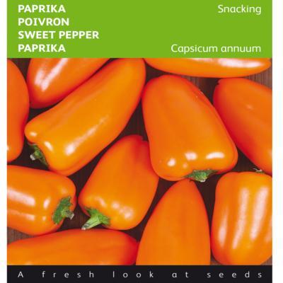 capsicum-annuum-naranja