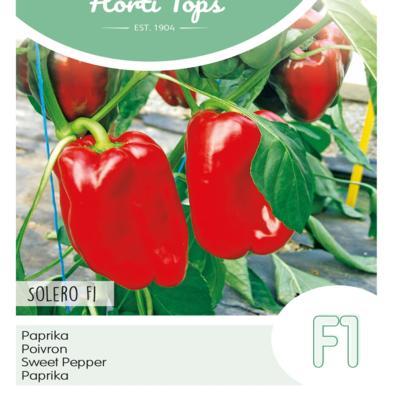capsicum-annuum-solero-f1