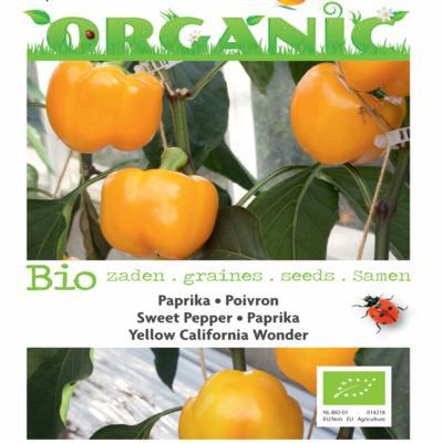 capsicum-annuum-yellow-california-wonder-bio