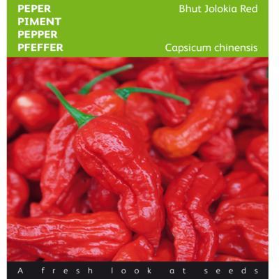 capsicum-chinense-bhut-jolokia-red