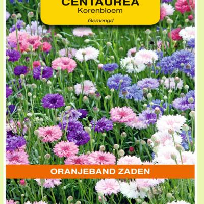 centaurea-cyanus-dubbelbloemig-gemengd
