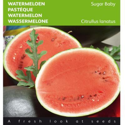 citrullus-lanatus-sugar-baby