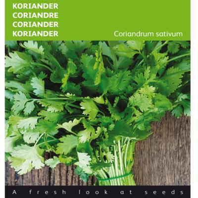 coriandrum-sativum-grootzadig