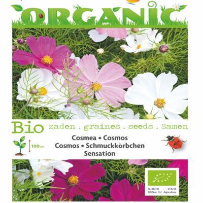 cosmos-bipinnatus-sensation-bio