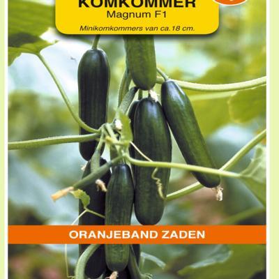 cucumis-sativus-magnum-f1
