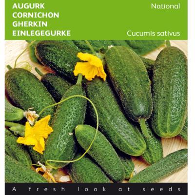 cucumis-sativus-national