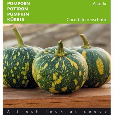 cucurbita-moschata-asterix