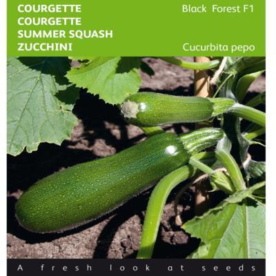 cucurbita-pepo-black-forest-f1