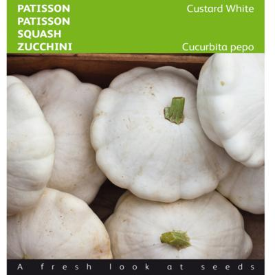 cucurbita-pepo-custard-white