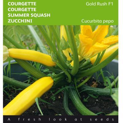 cucurbita-pepo-gold-rush-f1