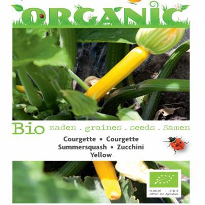 cucurbita-pepo-yellow-bio