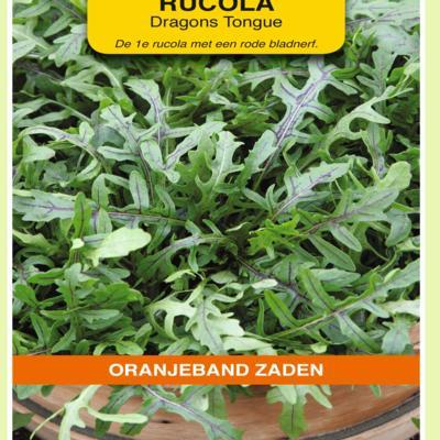 diplotaxis-tenuifolia-dragons-tonque