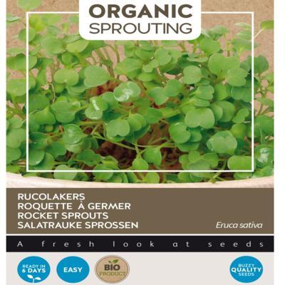 eruca-sativa-sprouting-rucolakers-bio