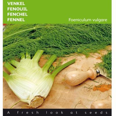 foeniculum-vulgare-var-dulce-de-florence