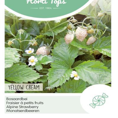 fragaria-vesca-yellow-cream