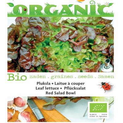 lactuca-sativa-red-salad-bowl-bio