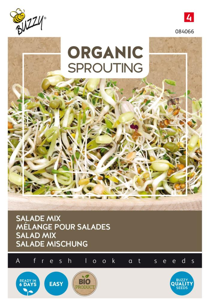Lactuca sativa 'Sprouting Salademengsel' (BIO) plant