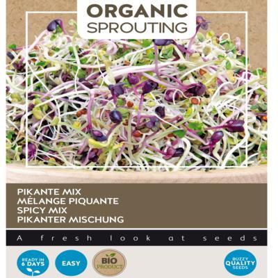 lactuca-sativa-sprouting-salademengsel-pikant-bio